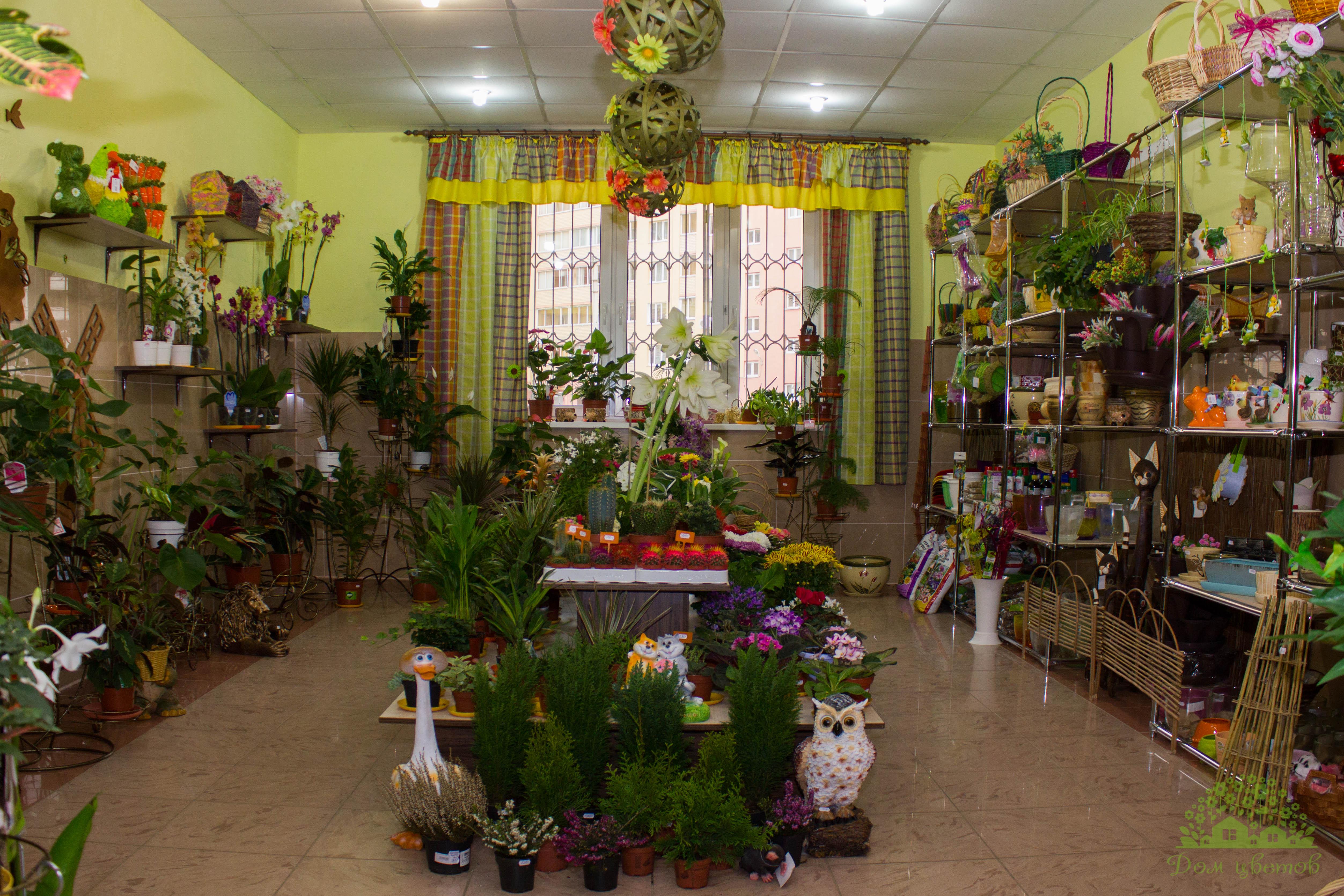 Искусственные цветы купить оптом в смоленске сухоцветы купить харьков